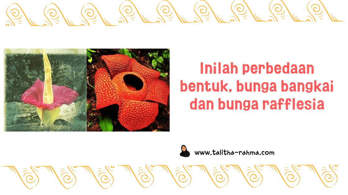 Bunga Rafflesia, Bunga Monster atau Bunga Bangkai?